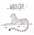cheetah wild cat vector image vector image