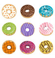 collection with colorful donuts glaze vector image