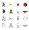 design insect and fly sign collection vector image vector image