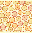 seamless pattern with dried oranges lemons and vector image