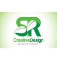 sr green leaf letter design logo eco bio leaf vector image vector image