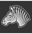 Zebra symbol for dark background vector image