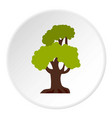 big tree icon circle vector image vector image