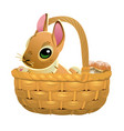 cute brown bunny in a wicker basket isolated on vector image