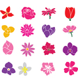flowers one vector image vector image