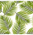 palm leaves pattern background vector image vector image