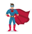 Superhero icon Cartoon design graphic vector image vector image