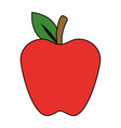 apple fresh fruit icon vector image
