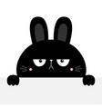 black rabbit bunny silhouette holding empty paper vector image