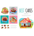 cartoon sweet products infographic concept vector image vector image