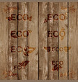 eco signs bevels on wood vector image