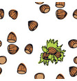 food collection hazelnuts seamless pattern vector image vector image