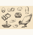 graphic poultry farm goods in vector image vector image