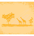 grunge background with giraffe silhouette on vector image vector image