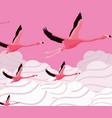 tropical flamingo design vector image