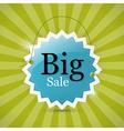 Blue Retro Big Sale Tag - Label on Green vector image