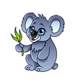 cartoon koala isolated vector image vector image
