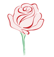 rose red vector image vector image