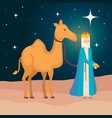 wise king with camel manger characters vector image