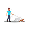 young smiling man walking with dogs social worker vector image