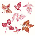 collection pink autumn leaves realistic style vector image