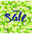 floral big summer sale card vector image