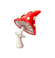 fly-agaric isolated amanita fungi vector image