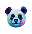 portrait a panda bear head from a splash vector image vector image