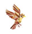 sparrow flying low polygon vector image vector image