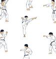 men engaged in karate vector image