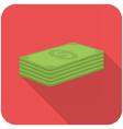 Stack of paper money vector image