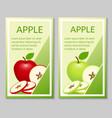 apple brochure design vector image