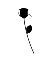 Black Silhoutte of Rose vector image