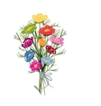 Floral bouquet sketch for your design vector image