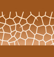 giraffe print texture with brown patches on beige vector image vector image