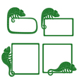 set icons with green chameleon isolated object vector image
