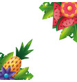 tropical pineapple watermelon flower leaves vector image vector image