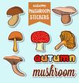 autumn mushroom stickers vector image vector image