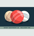 cricket balls icon game equipment professional vector image vector image