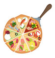 different kinds pizzaprint vector image
