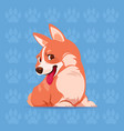 dog corgi happy cartoon sitting over footprints vector image