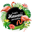 hawaii tropic paradise vector image vector image