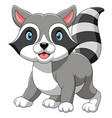 happy raccoon cartoon vector image