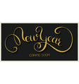 newyear gold 01 vector image vector image