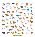 animals asia collection vector image vector image
