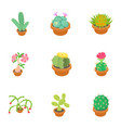 cactus icons set cartoon style vector image vector image