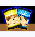 cashew nuts vector image