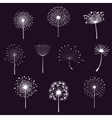 Floral elements with dandelions vector image vector image