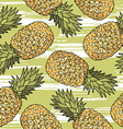 Pineapple pattern background vector image vector image