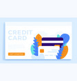 credit card stock for landing page or vector image